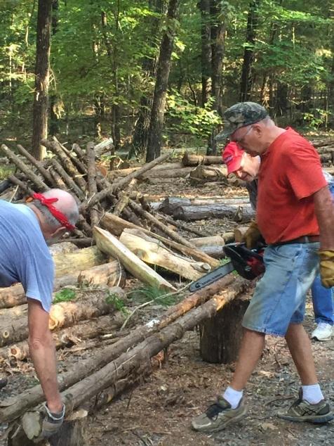 harvesting-logs-for-fencing