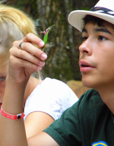 2012-halberg-ecology-camp2