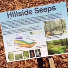 South Fork Nature Center Greers Ferry Lake AR - Hillside Marker