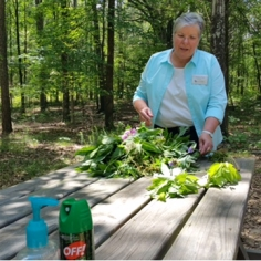 Herbal Workshop at the South Fork Nature Center 3