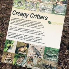 south Fork Nature Center Greers Ferry Lake AR - Creature Marker